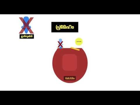 Kannur Classroom - Pancreas (Malayalam)