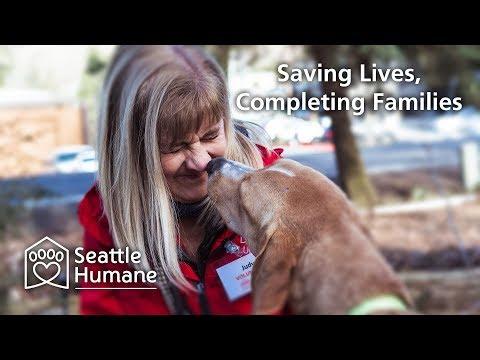 Seattle Humane — Animal Shelter in Bellevue, WA