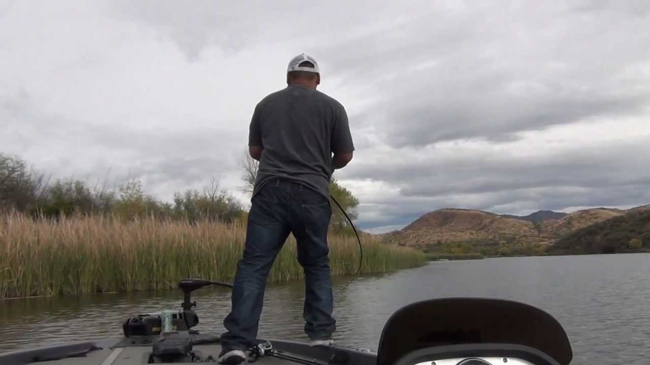 Fishing Patagonia Lake In AZ - Map, Fish Species, Lake Info