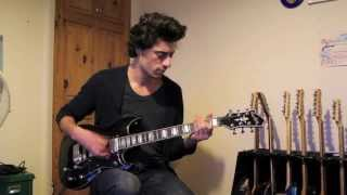 Hagstrom Pat Smear Signature Guitar Review By Mike Bradley