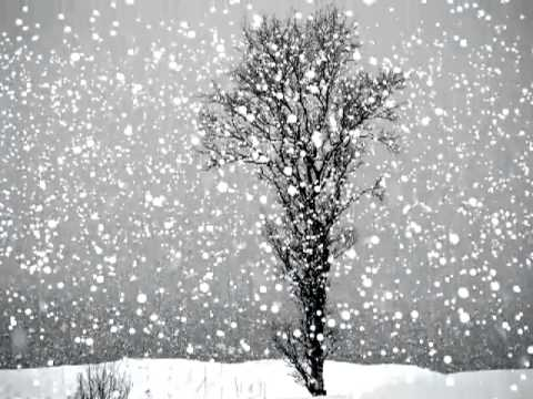 White Snow Day Live Wallpapers - YouTube