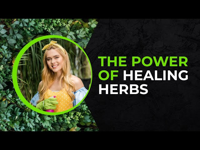 The Power Of Herbs - AWESOME BBC Herbal Medicine Documentary