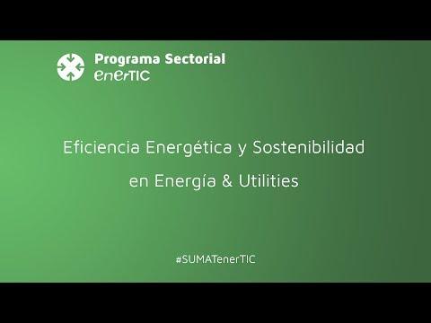 Eficiencia energética y sostenibilidad en Energía & Utilities