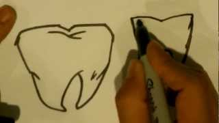 How to Draw a Tooth - Easy Drawings
