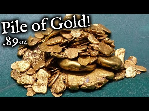 HUGE Pile Of Gold From Pickerton!