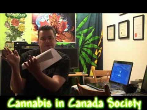 New Q&A with Remo (Urban Grower) and Jason