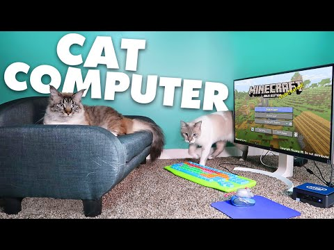 Giving my cats their own computer!   Monday Vlog