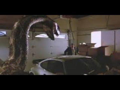 فيلم الاثارة  المترجم الأفعى العملاقة أكلة البشر  بايثون  python