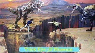 3D MUSEUM ♥ FUN at Trick Eye Museum