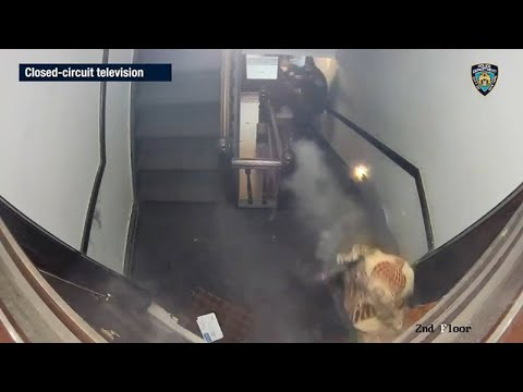 Bodycam shows officers shot in stairwell of Brooklyn apartment