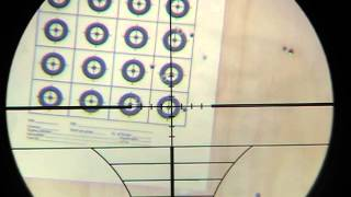 cometa lynx v10 .22cal shooting target