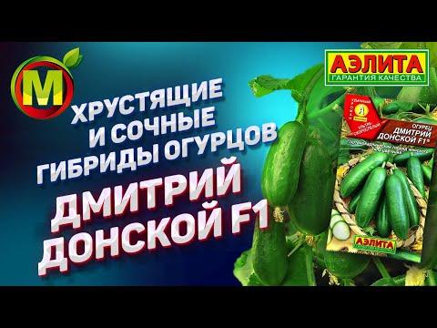 �� ХРУСТЯЩИЕ и СОЧНЫЕ гибриды огурцов для посадки в 2019. Дмитрий Донской F1