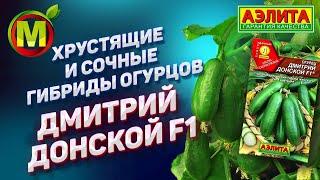 🥒 ХРУСТЯЩИЕ и СОЧНЫЕ гибриды огурцов для посадки в 2019. Дмитрий Донской F1