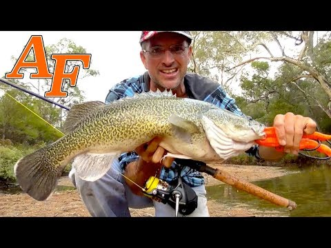 4x4 Adventure Monster Catch and Cook Murray Cod EP.403