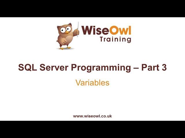 SQL Server Programming Part 3 - Variables