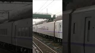 室蘭本線虎杖浜駅 キハ261系 特急北斗 高速通過