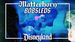 Matterhorn Bobsleds POV || Nathan Naiker