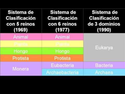 estudio del genesis pdf