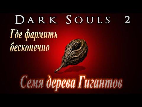 БЕСКОНЕЧНЫЕ СЕМЕНА Дерева Гигантов \ Семя дерева Гигантов ► [Dark Souls 2] Дарк Соулс 2 ГАЙД