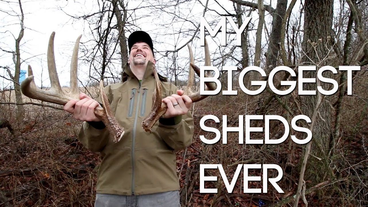 FINDING MY BIGGEST SHED ANTLERS EVER