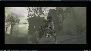 Shadow of the Colossus Gnu/LInux Rpcs3