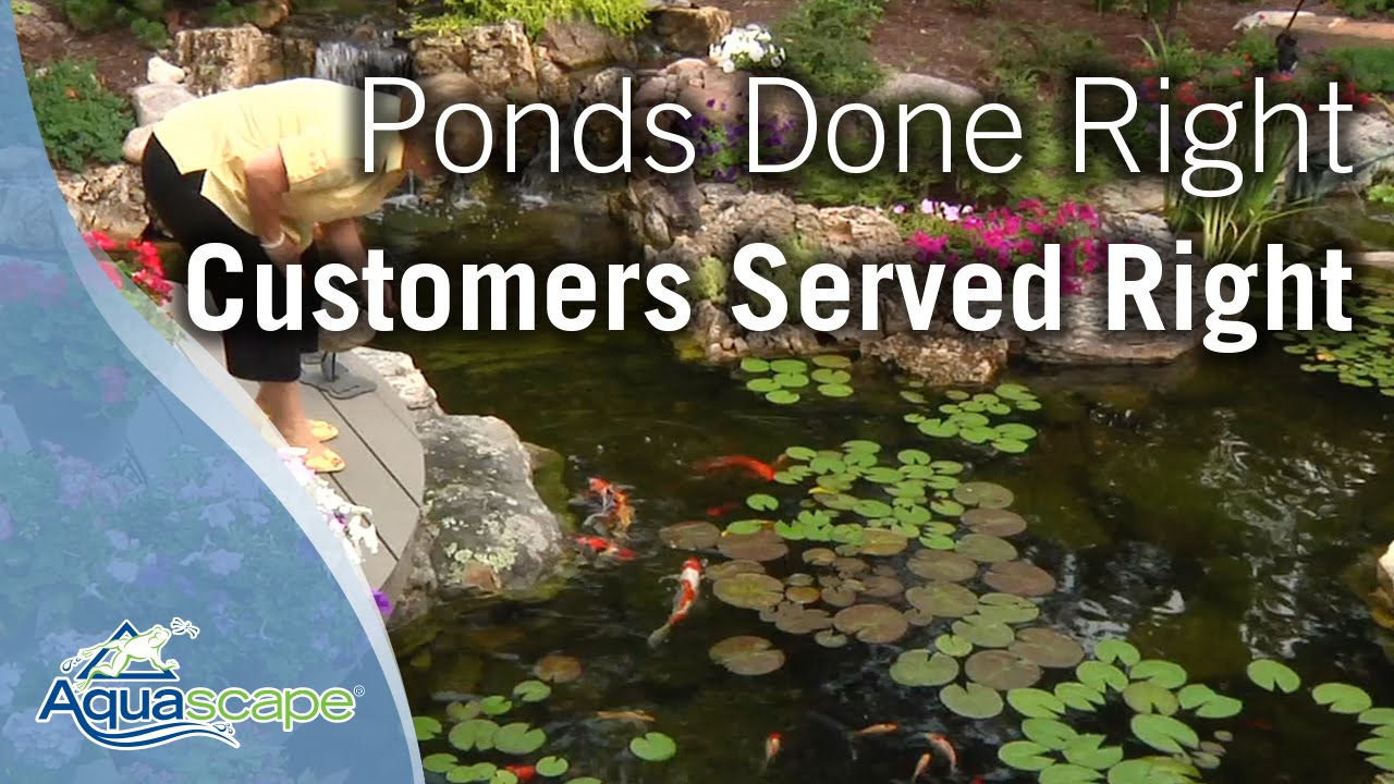 Aquascape   Ponds Done Right. Customers Served Right.   YouTube
