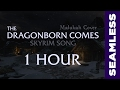 Skyrim The Dragonborn Comes Malukah Cover 1 HOUR Seamless Loop mp3