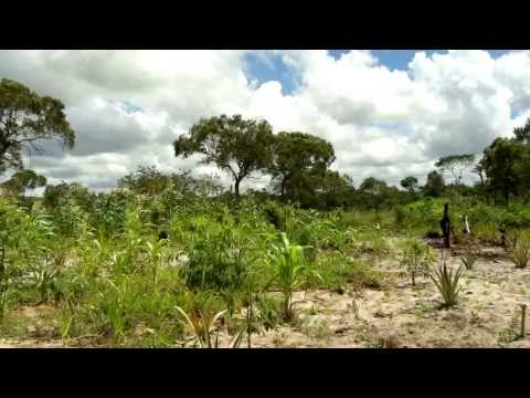Anadarko: Mozambique LNG Project Vision 2013 (English)