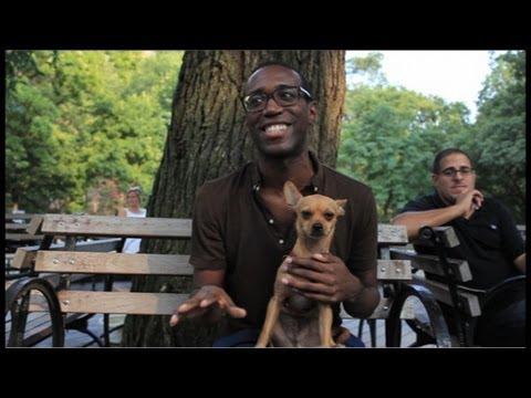New York's Best Dog Parks