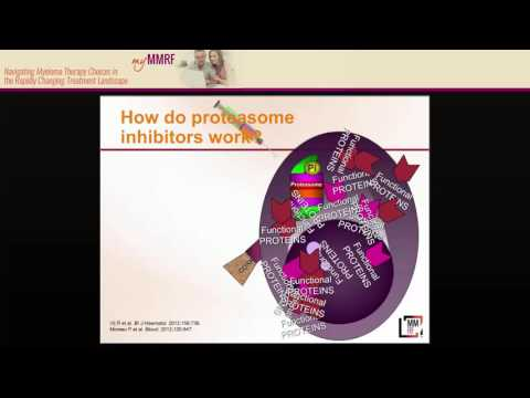 MMRF Patient Webinar: Newly Approved Drugs