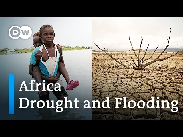 African countries hit by severe flooding and drought | DW News