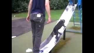funny staffy dog tries running up slide!!!!