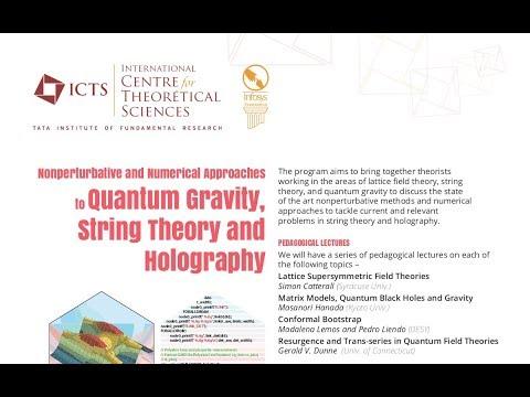 Complex Langevin Dynamics in Large-N Gauge Theories  by Pallab Basu