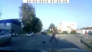 Кот переходит дорогу