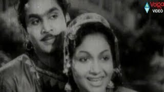 Anarkali Songs - Jeevitame Saphalamu - Anr - Anjali devi