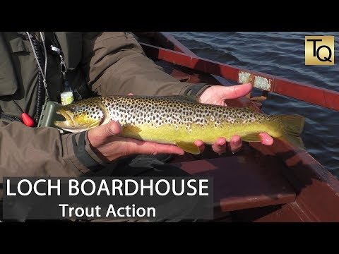 Fly Fishing For Trout In Scotland - Loch Boardhouse