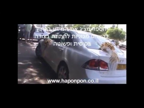 קישוטי רכב לחתונה - ספר הדרכה חינם