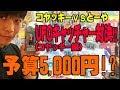 【予算5,000円で対決】UFOキャッチャー攻略!まさか…あの隙間に…!ワンピース20thワ…