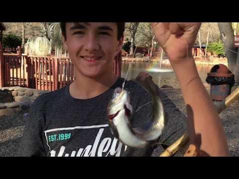 Grand Canyon + TROUT Fishing