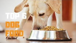 Best Dog Food in 2019 - Top 6 Dog Food Review