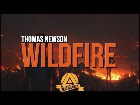 Thomas Newson - Wildfire (Original Mix)