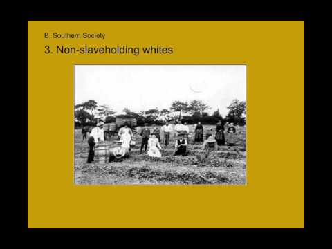 PPT - Slavery and Abolition