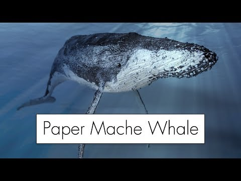 Making a Giant Paper Mache Whale
