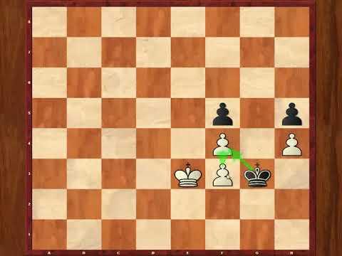 FM Dennis Monokroussos - A simple pawn ending