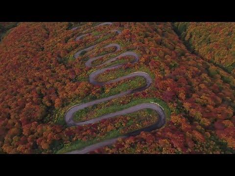 A 69 switchback Japanese downhill longboard race. | Red Bull Side Winders