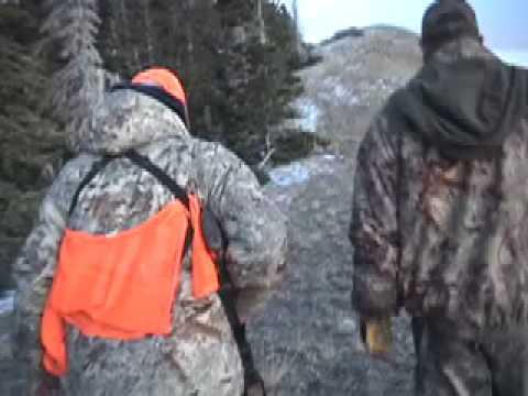 Buffalo hunt on Henry Mountains UT, Lloyd Stevens
