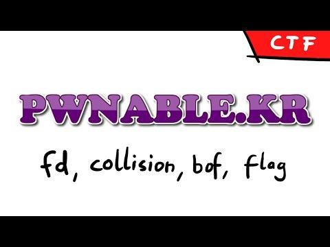 pwnable.kr - Levels: fd, collision, bof, flag