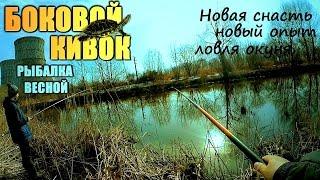 БОКОВОЙ КИВОК в начале весны и встреча с ЧЕРЕПАХОЙ в марте! ТЭЦ!