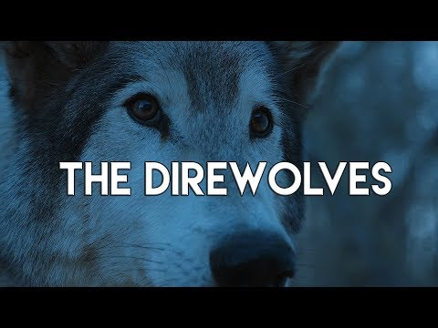 Game Of Thrones || The Direwolves