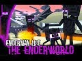 Monster School : Enderman's Life (A very sad story) - Minecraft Animation